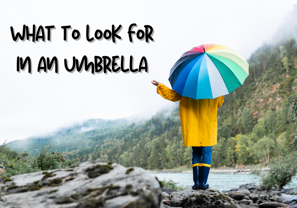 What to Look For in an Umbrella